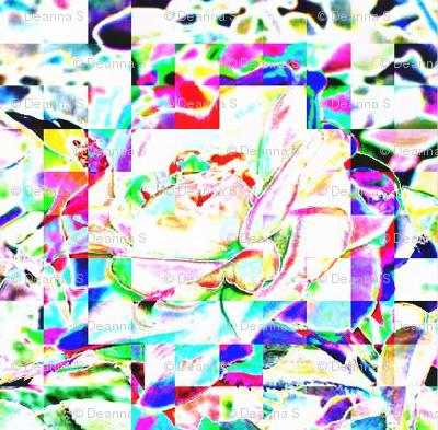 Roseypixelinfrahdr