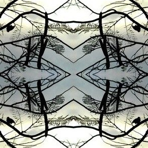 Branches and Birds Silhouette