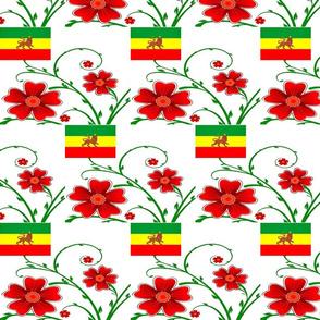 Ethiopian Pride