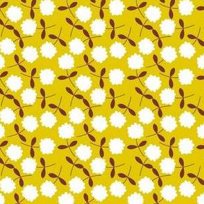 Daisy Mustard