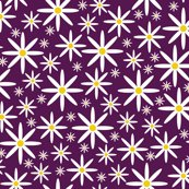 Rrfield_of_daisies-purple_shop_thumb
