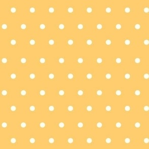 Polka_Dots_Ornage Sherbet