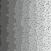 Black & White Voronoi