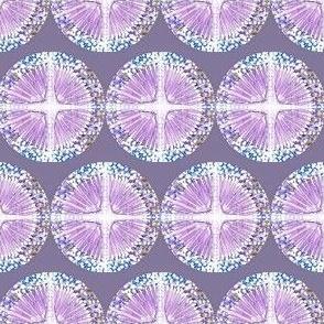 dark lavendar star