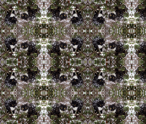 Cats in bush fabric by jennfamousart on Spoonflower - custom fabric