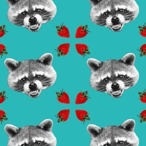 evil raccoon with strawberries