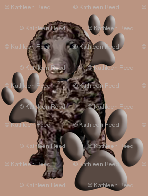 Irish Water Spaniel and Paw prints