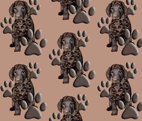 Irish Water Spaniel and Paw prints fabric by dogdaze_ on Spoonflower - custom fabric