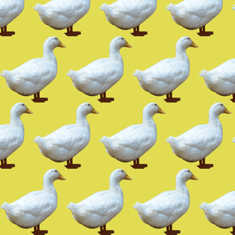 White Duck on yellow fabric by megankaydesign on Spoonflower - custom fabric