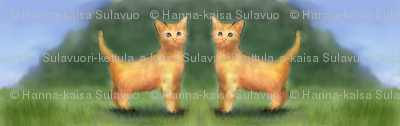 The_orange_kittens