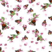 Pink Flowers & Butterflies