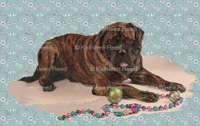 brindle Mastiff smaller