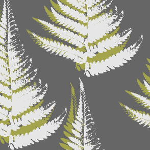 Fern - eco green