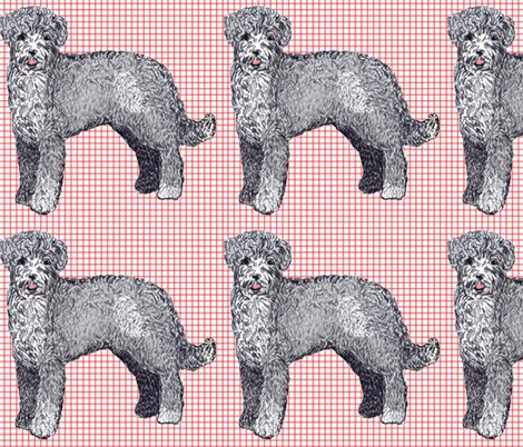 Rrrportuguese_waterdog2_shop_preview