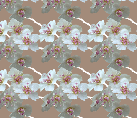 blossoms_brown fabric by klucas on Spoonflower - custom fabric