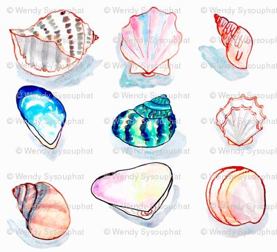 Shells 2002