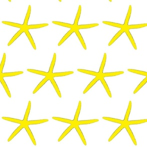 Finger Starfish Yellow
