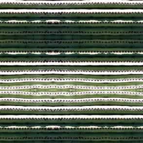 SaguaroRib1