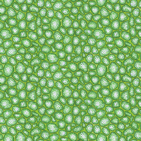 moss cells fabric by weavingmajor on Spoonflower - custom fabric