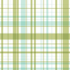 RIDE A BIKE COORDINATING CHECK IN OLIVE AND MINT