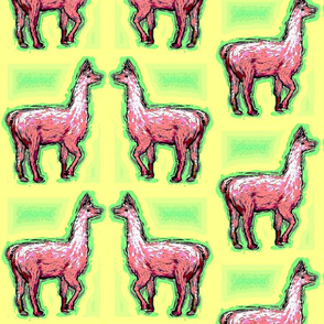 Habba_Zzabba_Llamas2