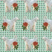 Rrafghan_and_roses2_shop_thumb