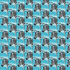 zebradrama-ocean