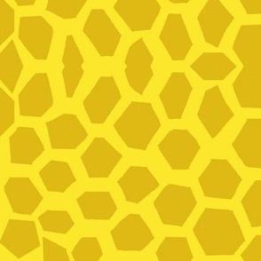 Moroccan Honeycomb