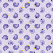 Beanie Purple Birds