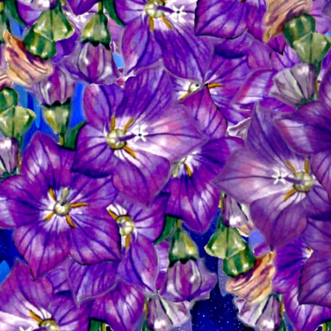 Morning Glory fabric by whimzwhirled on Spoonflower - custom fabric
