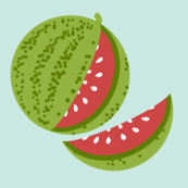 Melon Patch