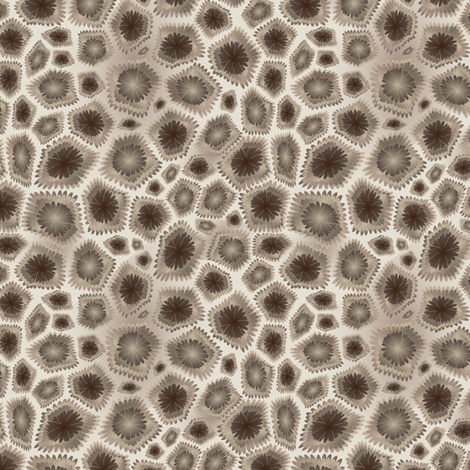 Petoskey Stone fabric by kahoxworth on Spoonflower - custom fabric