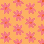 daisy pink sorbet