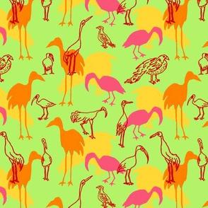 Feathered Flocks - Gaggle