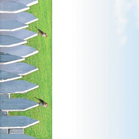 Rr004_white_picket_sparrows-b-s_shop_preview