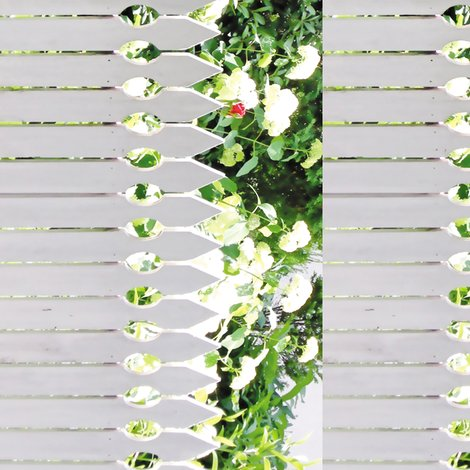 Rrr008_white_picket_rose-b-s_shop_preview