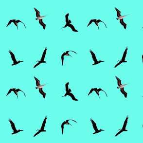 flying pelicans on pale blue background