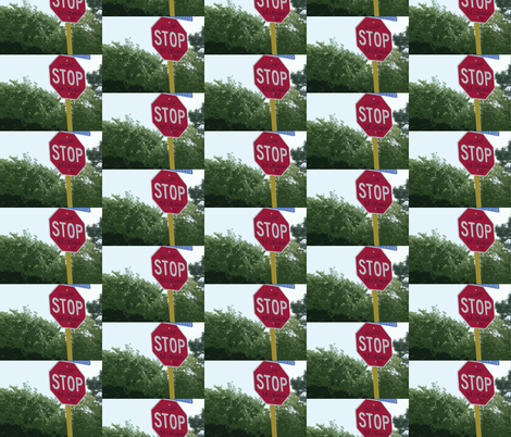 Texas Signs - Donat Stop Believing fabric by susaninparis on Spoonflower - custom fabric