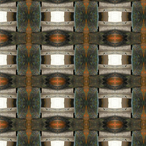 Photographic Abstract Check