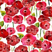 Rrrrred_poppies_shop_thumb