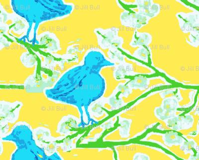 blue bird blossom ©Jill Bull 2012