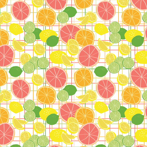 citrus fabric by einekleinedesignstudio on Spoonflower - custom fabric