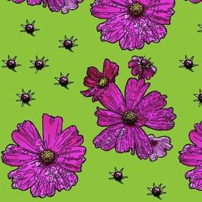 Fuchsia Cosmos on Spring Green Field