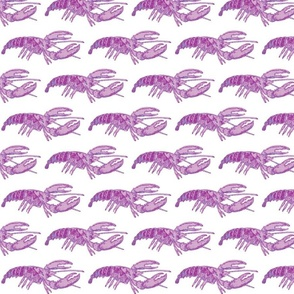 Purple Lobster on White