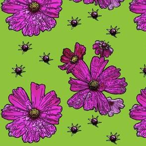 Fuchsia Cosmos in a Field of Spring Green