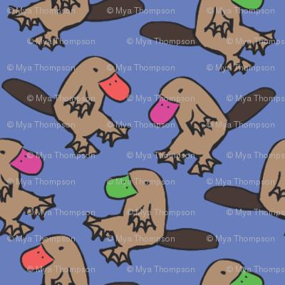 Platypus frolic