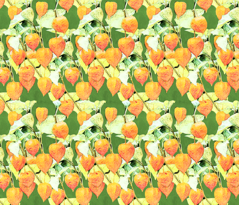 chinese lantern plant fabric by kociara on Spoonflower - custom fabric