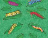 Caterpillars10_thumb