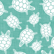 North West_TURTLES_turquoise