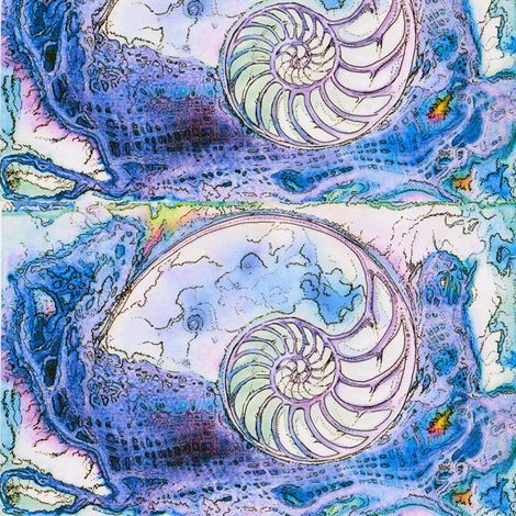 Nautilus Dance  fabric by dovetail_designs on Spoonflower - custom fabric